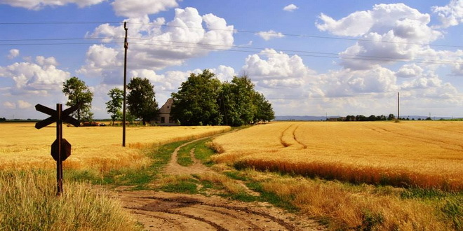 vojvodina-ravnica-salas-salasi-zitnica-poljoprivreda